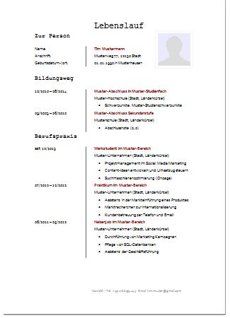 lebenslauf 002 vorlage 002 bewerbungen auf hchstem niveau autor